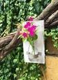 Natur:re Çevre Dostu Mini Şişe Duvar Süsü Vazo Renksiz